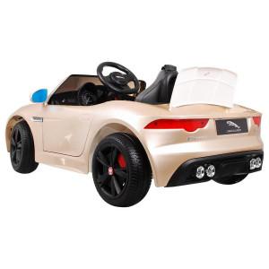 JAguar F-TYPE R Lakitud Elektrilised autod